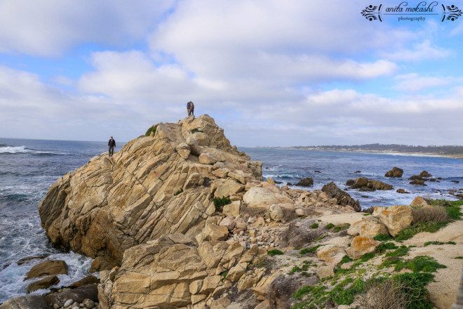 17 Mile Drive, Peeble Beach in California