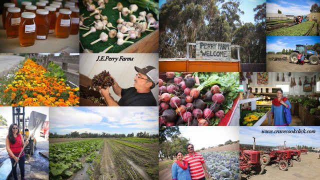 J E Perry Farms, Ardenwood