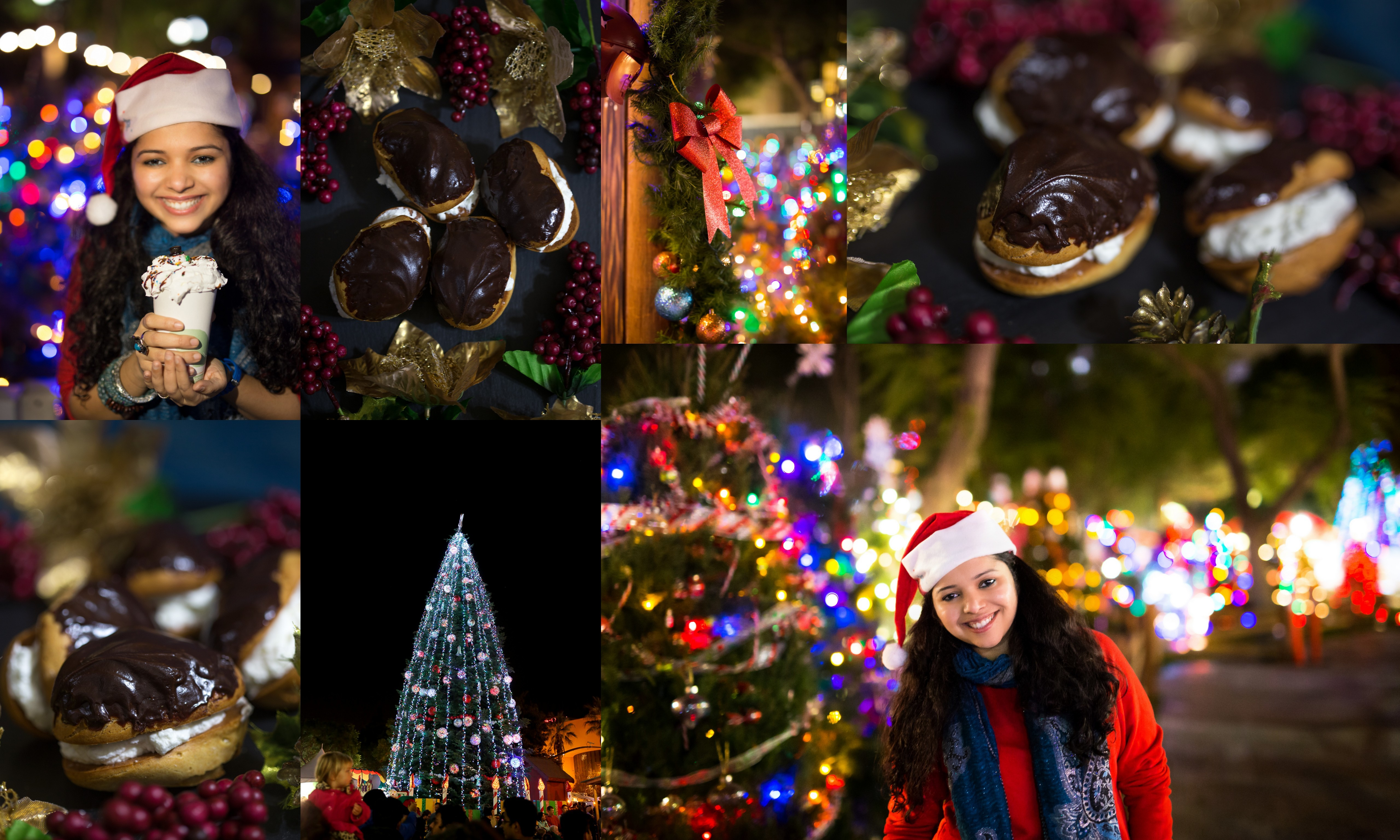 christmas-in-the-park8