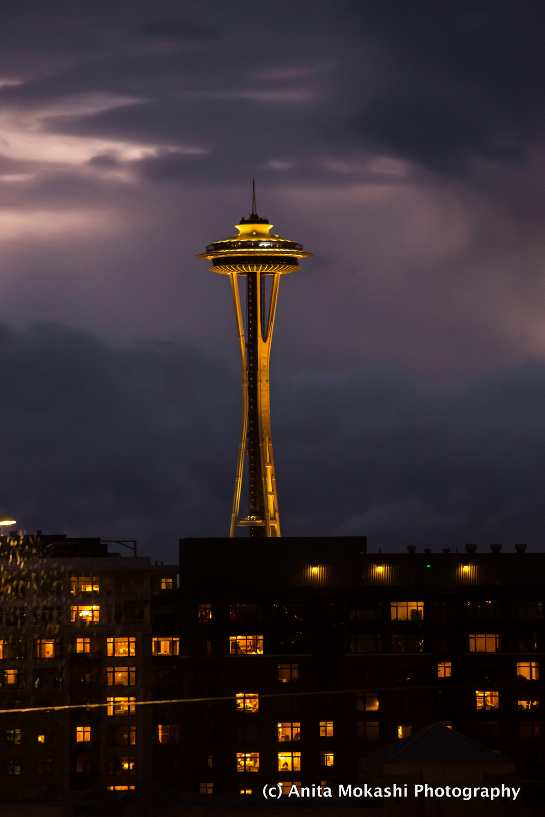 Seattle Travelogues, Things to do in Seattle, Skagit Tulip Festive, Space Needle., Pikes Place Market, Snoqualmie Falls, The 1st Starbucks, Chihuly Garden and Glass, Travel Blog,  Travel Itinerary, Must see places in seattle