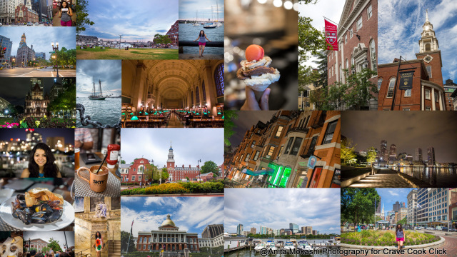 boston travelogue, boston itinerary, boston common, harvard square, harvard university, boston library, freedom trail, boston common, boston cream pie, boston pier, mikes place, MIT, travel blog, must do things in boston